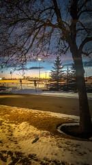 Leaving Work (Bracus Triticum) Tags: leaving work 12月 december winter 2018 平成30年 じゅうにがつ 十二月 jūnigatsu 師走 shiwasu priestsrun calgary カルガリー アルバータ州 alberta canada カナダ