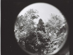 Some places (Matthew Paul Argall) Tags: lomographyfisheyebaby fixedfocus 110 110film subminiaturefilm lomographyfilm 100isofilm blackandwhite blackandwhitefilm