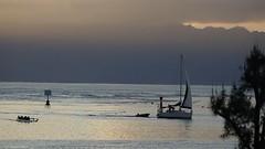 Polynésie 2019 - Tahiti (Valerie Hukalo) Tags: voilier vaa pirogue taapuna tahiti archipeldelasociété valériehukalo hukalo polynésiefrançaise frenchpolynesia océanpacifique pacificocean océanie oceania lifestyle punaauia lagon