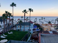Catalina Island, CA (- Adam Reeder -) Tags: car y2019 m03 d15 lat330 lon1180 los angeles california united states photo jpg apple iphone x catalina island ca