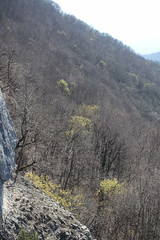 Belvédère @ Hike to Montagne de la Mandallaz & Lac de La Balme de Sillingy (*_*) Tags: europe france hautesavoie 74 spring printemps 2019 march annecy labalmedesillingy epagny hiking mountain montagne nature randonnée walk marche trail forest viewpoint pointdevue belvedere jura mandallaz afternoon savoie hike
