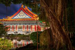 Light Pond II (Cyclase) Tags: taipeh taiwan asia lake pond garden tree night nacht baum garten reflektion reflection palace pagoda famousplace landmark sehenswürdigkeit asien see tümpel