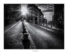 One More Light... (michel di Méglio) Tags: marseille star etoile bw monochrome city ville noiretblanc silverefexpro lumiere light contrast olympus 45mm contrejour plaine