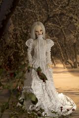 (cyranka) Tags: dressby cyranka cyrankasewing dim marcelina sd bjd outfit bjddress dressfordoll