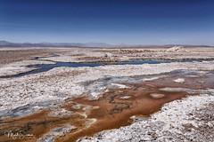 Chaxa lagoon (marko.erman) Tags: desert atacama chile salt chaxa lagoon dry volcanos salar minerals sun landscape horizon white travel outside