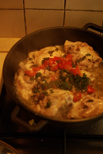 Pollo alla pizzaiola (3)