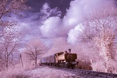 False colour infrared (alanrharris53) Tags: steam train battlefieldline leicestershire engine pannier tank gwr infrared ir falsecolour 6430