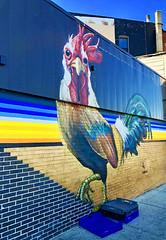 Cuckold by JDLM1 (wiredforlego) Tags: graffiti mural streetart urbanart aerosolart publicart chicago illinois ord jdlm1 juandelamoramonsivais rooster