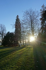 Wedding @ Parc Charles Bosson @ Annecy (*_*) Tags: march 2019 hiver winter afternoon europe france hautesavoie 74 annecy savoie lacdannecy lakeannecy lac lake sunset sunny parccharlesbosson park