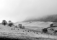 Sidlaw Hills Farmland (eric robb niven) Tags: ericrobbniven scotland dundee perthshire landscape bw hills cycling