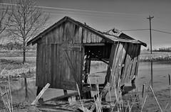 Boathouse (timvandenhoek1) Tags: boathouse blackandwhite sigma30mmf14dcdncontemporaryemount sonyilce6000 timvandenhoek midwest missouri rundown dilapidated abandoned rustic rural pond lake cattails