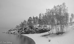 Late winter morning (Trond Sollihaug) Tags: frosta trondelag trøndelag norway winter snow seaside mist fog