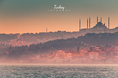 turkey-9516 (nat_panviroj) Tags: