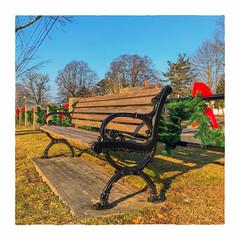 Christmas on the Common (Timothy Valentine) Tags: 2018 towncommon large bench 1218 christmas monday eastbridgewater massachusetts unitedstates us