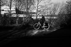 Spotlight Kid (stefankamert) Tags: street bicycle spotlight man noiretblanc noir blackandwhite blackwhite ricoh gr ricohgr grii 28mm grain light shadows trees