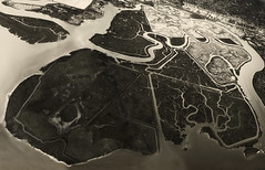 Bair Island State Marine Park (elektron9) Tags: california ca cali usa us redwoodcity bayarea sfbay sanfranciscobay westcoast bairisland marine park protected marsh coastline island twists turns mosaic afternoon sunny bandw buildings nature preserve conservation green birds birding wetland protect hear heart creek blackandwhite tones aerial from air airplane windowseat sfo bair state castateparks black white monochrome water pool jogging veins donedwardssanfrancisconationalwildliferefuge usfws cadfw wildlife ventricles