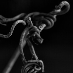 #bud #branch #spring #blackandwhite #macrophotography #stillphotography (khuskivadzeketi) Tags: bud spring stillphotography blackandwhite macrophotography branch