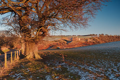Crichton Castle Sunset (captures.in.time) Tags: landscape landscapephotography ngm ngc wonderlust scotland europe lothian midlothian crichton crichtoncastle castle sun sunset golden goldenhour warm snow fence land farm visitscotland love cold tree road sky grass field