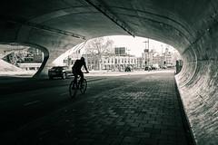 Arnhem (bjdewagenaar) Tags: photography photograph photographer photooftheday sony sonyalpha sonyphotographer sonyimages sonya sonya7riii sonygm sonygmaster mirrorless fullframe street streetphotography blackandwhite blackwhite bw mono monochrome monoart splittoning splittone raw lightroom traffic bicycle dutch holland