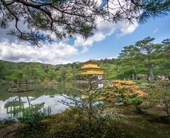 Kinkaku-ji (Tom Neumann) Tags: sony sonya6000 ilce6000 jardin templo budismo japon kyoto kinkakuji arboles naturaleza nature trees garden japan kioto buddhism water lake river sky goldentemple templodorado