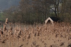 Lake of Menteith (rockyrutherford) Tags: scotland lake water reeds nikon d7100 paintshop boathouse