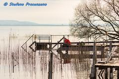 Ammirando il Lago di Morat a Bas-Vully (Stefano Procenzano) Tags: montvully fr svizzera ch basvully vully cantonfribourg nikon nikkor d750 nikond750 lacdemorat murtensee afmicronikkor105mmf28d 105mm 105mmmacro f28 105mmf28 macro polarizer polarizzatore lac lago lake people persone availablelight nature general 105mmf28dmicro