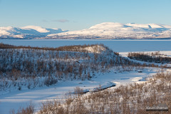 Abisko River Delta (kevin-palmer) Tags: abisko sweden swedishlapland europe arctic nikond750 tamron2470mmf28 abiskoriver snow snowy ice icy frozen torneträsk lake birchtrees clouds march winter afternoon scandinavianmountains