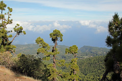 View down to the north coast near Hoya Grande (EduardMarmet) Tags: lapalma spanien esp