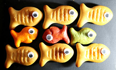 Happy Like a Fish in Water... (francepar95) Tags: macromondaysandaprilfools macro theme challenge week fish food poissons nourriture défi semaine hmm april poissondavril jokes farces