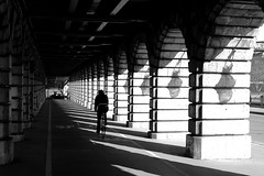 On the lined track (pascalcolin1) Tags: paris13 homme man vélo bike lumière light soleil sun ombres shadows lampes lamps rayures lines lined pistecyclable cycletrack pont bridge photoderue streetview urbanarte noiretblanc blackandwhite photopascalcolin 50mm canon50mm canon