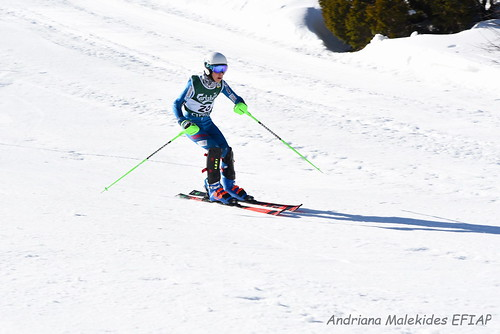 Alpine Races I & II Feb 2019_06