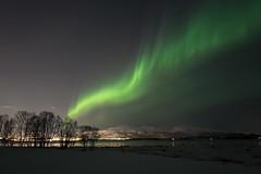 northern lights (jarguel) Tags: aurore northernlights aurora norvève norway troms tromsø nuit night light snow neige hiver winter leica leicaq