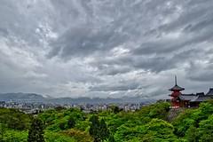 Grey and Green (nigel@hornchurch) Tags: dsc0708 higashiyamakukyoto kyoto japan