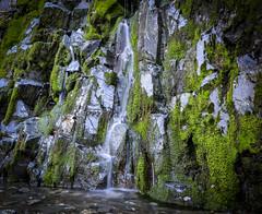 roadside falls (georgechristison) Tags: waterfall water moss slowshutter longexposure mendocino california george christison