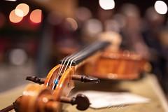 20181222_Konzert_0008.jpg (Peter Goll thx for +10.000.000 views) Tags: musik erlangen d750 nikon unserliebefrau kirche adventskonzert 2018 hesdorfersingkreis nikkor konzert kammerorchesterdesceg dechsendorf bayern deutschland de geige violine violin bokeh