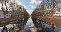 Symmetrie #weihnachten #bluesky #blauerhimmel #spiegelung #xmas #cologne #köln #liebedeinestadt #neueheimat #clarenbachkanal #park #weihnachtsspaziergang #walk #vsco #vscocam #rautenstrauchkanal