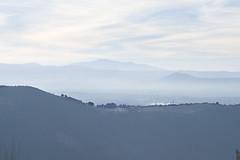 L1005161 (Sonsoles Huidobro) Tags: leicam10 summicron90mmpreasph landscape nieblas fog
