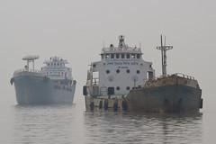 Bangladeshi Boats (Treflyn) Tags: looming out fog mist pashur river bay bengal mongla port khulna division bangladesh bangladeshi boats ship