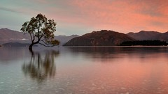 Dawn light (David Feuerhelm) Tags: clouds sunrise morning longexposure wanaka centralotago southisland newzealand nikkor d750 2470mmf28 peaceful nikon reflections