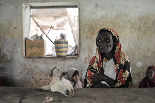 Recently Liberated Town Still Suffers Food Shortages