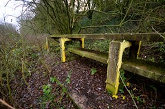 Markeaton Test Track (Sam Tait) Tags: markeaton rail railway railways british technical centre derby england raised model track concrete bridge wood woodland walk public foot path development experiment experimental old disused derelict abandoned explore