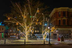 Winter Lights in Trees of Longfellow Square (Corey Templeton) Tags: portland maine unitedstatesofamerica us