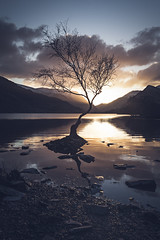 Sunrise at the Lone Tree (kris shaw) Tags: review wales snowdonia anglesey northwales waterfalls mountains travel longexpo seascape sunset sunrise cymru lakes trfan snowdon penmon