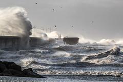 New Brighton waves (Philip Brookes) Tags: wave storm wind power nature weather newbrighton wirral unitedkingdom england britain coast shore beach