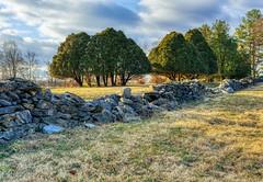 In Need of Repair (dngovoni) Tags: virginia virginiaarboretum arboretum clouds landscape sunrise trees winter