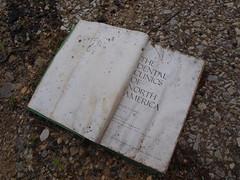 Forest Haven Asylum Books (ohtheplacesyoullgoxo) Tags: asylum scary abandoned mental hospital maryland forest haven