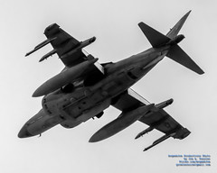 LOOKING UP AT RISING USMC AV-8B HARRIER UNDERBELLY IN B&W (AvgeekJoe) Tags: 100400mmf563 2018arcticthunderopenhouse av8b av8bharrier av8bharrierii av8bharrieriinightattack alaska anchorage arcticthunder arcticthunderopenhouse blacksheep buno163883 d5300 dslr harrier jber jointbaseelmendorfrichardson mcdonnelldouglasav8bharrierii mcdonnelldouglasav8bharrieriinightattack nikon nikond5300 sigma sigma100400mmf563 sigma100400mmf563dgoshsmcontemporary usa vma214 vma214blacksheep aircraft airplane attackjet aviation combataircraft fighterjet jet jumpjet lens plane telephotolens
