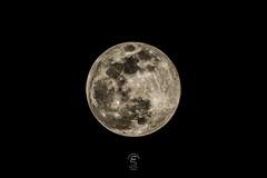 Luna (Eugenio_81) Tags: luna moon moonlight sollima italia italy moonscape landscape night notte cielo sky nero supermoon superluna fullmoon lunapiena plenilunio lunare full piena crateri craters europa europe landmark luogo eugeniosollima black febbraio february canonpowershotsx50hs pianeta planet satellite