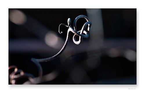 """le droit à la rondeur • <a style=""""font-size:0.8em;"""" href=""""http://www.flickr.com/photos/88042144@N05/46351872934/"""" target=""""_blank"""">View on Flickr</a>"""