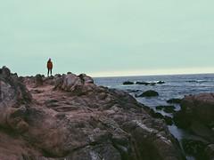 pacific grove (vhickey25479) Tags: nature ocean rocks california pacificgrove
